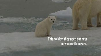 World Wildlife Fund TV Spot, 'WWF on TV: Polar Bears' Song by A Great Big World'