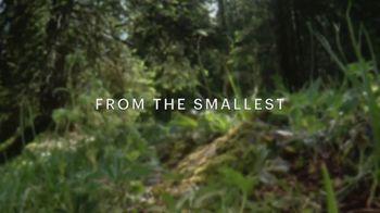 CuriosityStream TV Spot, 'David Attenborough' - Thumbnail 3