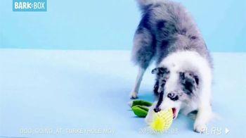 BarkBox TV Spot, 'Dogsgiving: Dog Deals' - Thumbnail 4