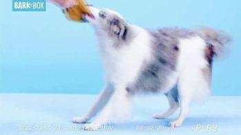 BarkBox TV Spot, 'Dogsgiving: Dog Deals' - Thumbnail 7