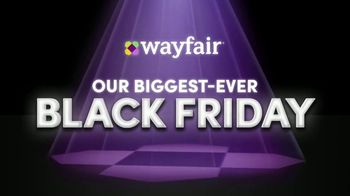 Wayfair TV Spot, 'Black Friday: Rugs, Living Room Seating and Appliances' - Thumbnail 10