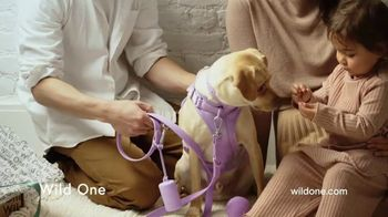 Wild One Harness Walk Kit TV Spot, 'The Perfect Holiday Gift'