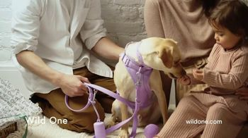 Wild One Harness Walk Kit TV Spot, 'The Perfect Holiday Gift' - Thumbnail 8
