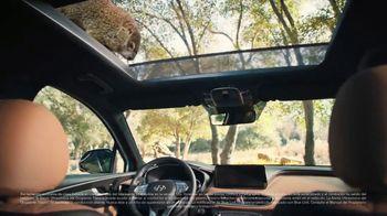Hyundai Santa Fe TV Spot, 'Aventura familiar' [Spanish] [T1] - Thumbnail 5