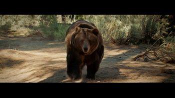 TaxACT TV Spot, 'Bear: Taxes Aren't Scary: 50%' - Thumbnail 6