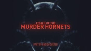Discovery+ TV Spot, 'Attack of the Murder Hornets' - Thumbnail 9