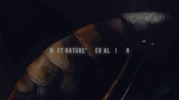 Discovery+ TV Spot, 'Attack of the Murder Hornets' - Thumbnail 4