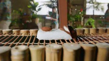 Almond Joy TV Spot, 'Taste Paradise'