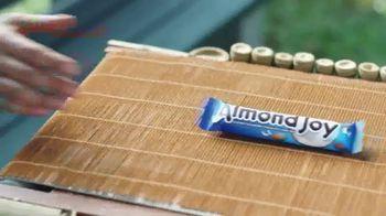 Almond Joy TV Spot, 'Taste Paradise' - Thumbnail 8
