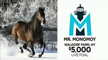 Climax Stallions TV Spot, 'Mr. Monomoy is Bringing His Speed and Outstanding Pedigree to NY' - Thumbnail 5