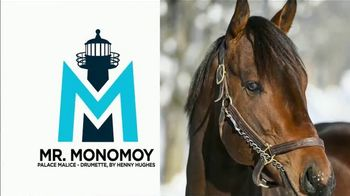 Climax Stallions TV Spot, 'Mr. Monomoy is Bringing His Speed and Outstanding Pedigree to NY'