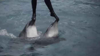 World Animal Protection TV Spot, 'Dolphin Defender' Featuring Kelly Slater - Thumbnail 6