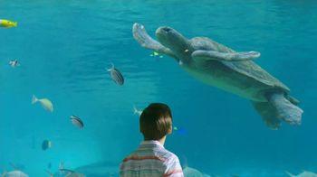 SeaWorld Orlando TV Spot, 'Seven Seas Food Festival: Save $50' - Thumbnail 1