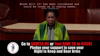 Citizens Committee for the Right to Keep and Bear Arms (CCRKBA) TV Spot, 'House Bill 127' - Thumbnail 3