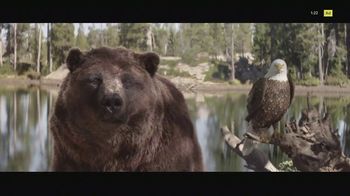 2021 Kia Sorento TV Spot, \'The Bear and the Eagle\' Song by The Heavy [T1]