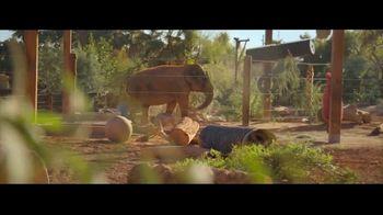 Gila River Casinos TV Spot, 'Play for Good: Phoenix Zoo' - Thumbnail 6