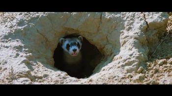 San Diego Zoo Wildlife Alliance TV Spot, 'Introducing' Song by Aloe Blacc