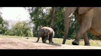 San Diego Zoo Wildlife Alliance TV Spot, 'Introducing' Song by Aloe Blacc - Thumbnail 7