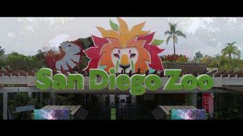 San Diego Zoo Wildlife Alliance TV Spot, 'Introducing' Song by Aloe Blacc - Thumbnail 4