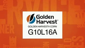Golden Harvest G10L16A TV Spot, 'Maximum Yield Potential' - Thumbnail 1