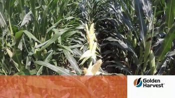 Golden Harvest G10L16A TV Spot, 'Maximum Yield Potential'