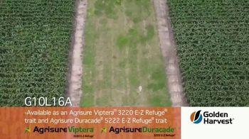 Golden Harvest G10L16A TV Spot, 'Maximum Yield Potential' - Thumbnail 4
