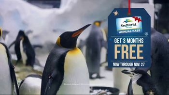 SeaWorld Black Friday Sale TV Spot, 'Christmas Celebration' - Thumbnail 2