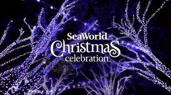 SeaWorld Black Friday Sale TV Spot, 'Christmas Celebration' - Thumbnail 3