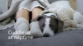 Kidde United Technologies TV Spot, 'Carbon Monoxide Poisoning in Pets' - Thumbnail 1