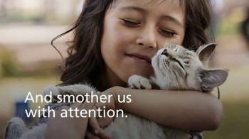 Kidde United Technologies TV Spot, 'Carbon Monoxide Poisoning in Pets' - Thumbnail 2
