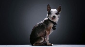 Subaru TV Spot, 'National Make a Dog's Day: The Underdogs: Heartstrings' [T2] - Thumbnail 5
