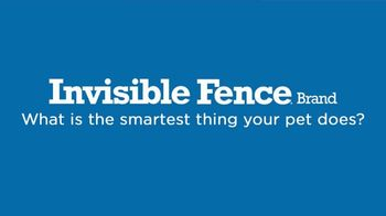 Invisible Fence TV Spot, 'Smartest Thing' - Thumbnail 1