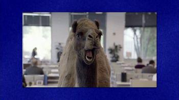 GEICO TV Spot, 'Jeopardy!: Hump Day' - Thumbnail 5