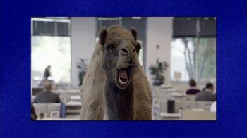GEICO TV Spot, 'Jeopardy!: Hump Day' - Thumbnail 6