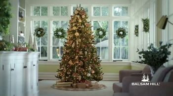 Balsam Hill Early Black Friday Deals TV Spot, 'This Tree: Up to 50%' - Thumbnail 1