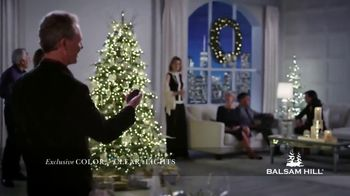 Balsam Hill Early Black Friday Deals TV Spot, 'This Tree: Up to 50%' - Thumbnail 3