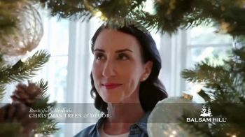 Balsam Hill Early Black Friday Deals TV Spot, 'This Tree: Up to 50%' - Thumbnail 6