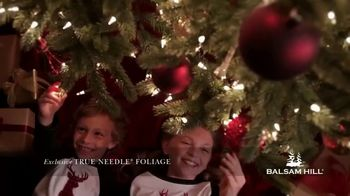Balsam Hill Early Black Friday Deals TV Spot, 'This Tree: Up to 50%' - Thumbnail 7