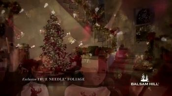 Balsam Hill Early Black Friday Deals TV Spot, 'This Tree: Up to 50%' - Thumbnail 8