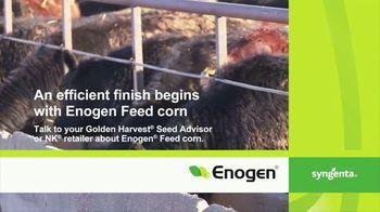 Syngenta Enogen Feed Corn TV Spot, 'Conversion Rates: Cole Baker' - Thumbnail 8