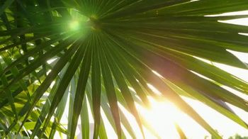 Michelob ULTRA Pure Gold TV Spot, 'Playa' Song by Maluma [Spanish] - Thumbnail 1