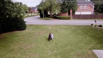 Invisible Fence TV Spot, 'Your Pets Love the Independence to Roam' - Thumbnail 9