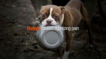 ASPCA TV Spot, 'Hunger Pains'