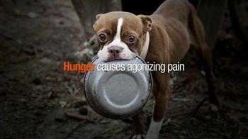 ASPCA TV Spot, 'Hunger Pains'