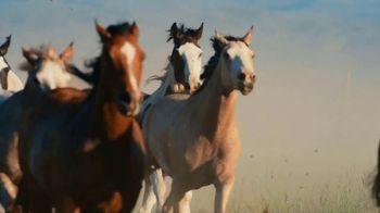 National Park Foundation TV Spot, 'Wonder Calls' - Thumbnail 8