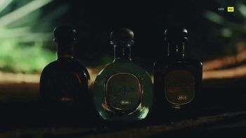 Don Julio TV Spot, 'The Legend of Agave Worship' - Thumbnail 10