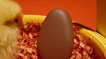 Reese's Peanut Butter Egg TV Spot, 'The Chicken or the Egg' - Thumbnail 1