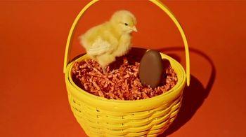 Reese's Peanut Butter Egg TV Spot, 'The Chicken or the Egg' - Thumbnail 4