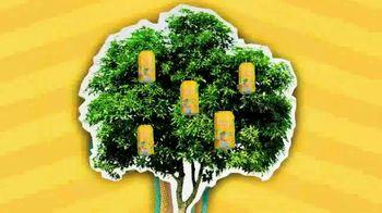 Golden Road Brewing Mango Cart TV Spot, 'California State of Mind' - Thumbnail 7