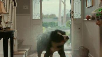 OxiClean Odor Blasters TV Spot, 'Remove Pet Odors' - Thumbnail 2